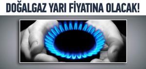 """""""Türkiye gazı yarı fiyatına alacak"""""""