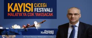 Malatya'ya Kayısı Çiçeği Festivali Çok Yakışacak