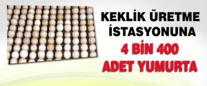 Keklik Üretme İstasyonuna 4 Bin 400 Adet Yumurta