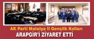 AK Parti Malatya İl Gençlik Kolları Arapgir'i Ziyaret Etti