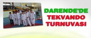 Darende'de Tekvando Turnuvası