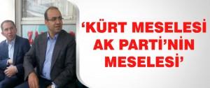 Kürt meselesi Ak Parti'nin Meselesi