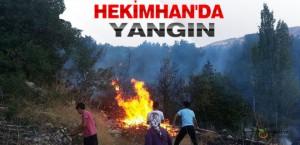 Hekimhan'da Yangın