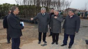 """Yeşilyurt Belediyesi Tepeköy'de """"Fidanlık Alanı"""" Oluşturdu"""