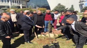 CHP'den Ağaçlı Protesto