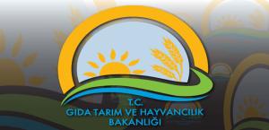 Kırsal Kalkınma Yatırımlarının Desteklenmesi Programı 9.Etap Uygulama Rehberi