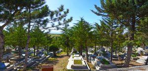 İlçe ve Kırsal Mahalle Mezarlıkların Etrafı Kafes Tel İle Çevriliyor