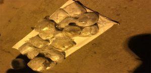 19 Kilo 50 Gram Toz Esrar Ele Geçirildi