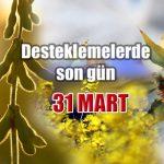 Yağlı Tohumlu Bitkiler Desteğinde Son Gün 31 Mart