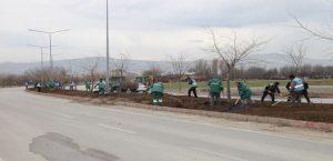 Elazığ Belediyesi'nden Bitki Dikim Çalışmaları
