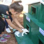 Şerifoğulları: Sokak Hayvanlarını Okullar Sahiplenecek